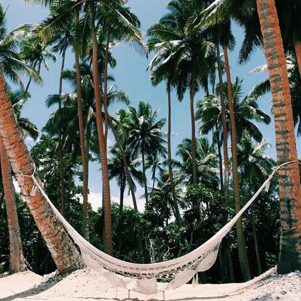 Yes // #Hammock in #Paradise
