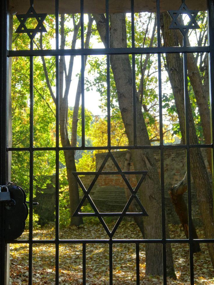 Cmentarz Żydowski | Jewish Cemetery #lublin #poland #polska #travel #jewishcemetery #seeuinpoland