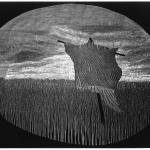 Occhio allo spauracchio, 2007Bulino su plexiglass – mm 260x380 – Tiratura: 30 arabi Foglio mm 350x500 - Stampata da Antonio Liboà