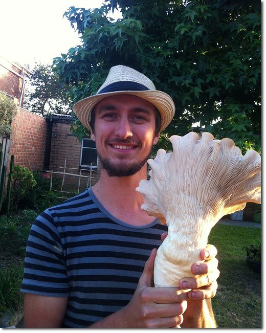 Making Mushroom Growing Sustainable - Part 1, the Set-up