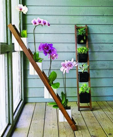 A great space saver for people who live in apartments and have a small porch. flowers on a ladder! -  To connect with us, and our community of people from Australia and around the world, learning how to live large in small places, visit us at www.Facebook.com/TinyHousesAustralia