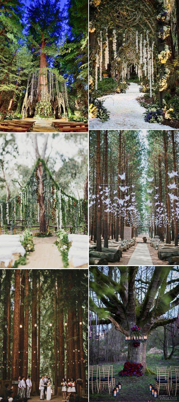 inspirational enchanted forest wedding ceremony ideas