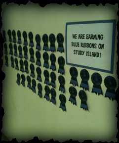Study Island blue ribbons (MO) bulletin board