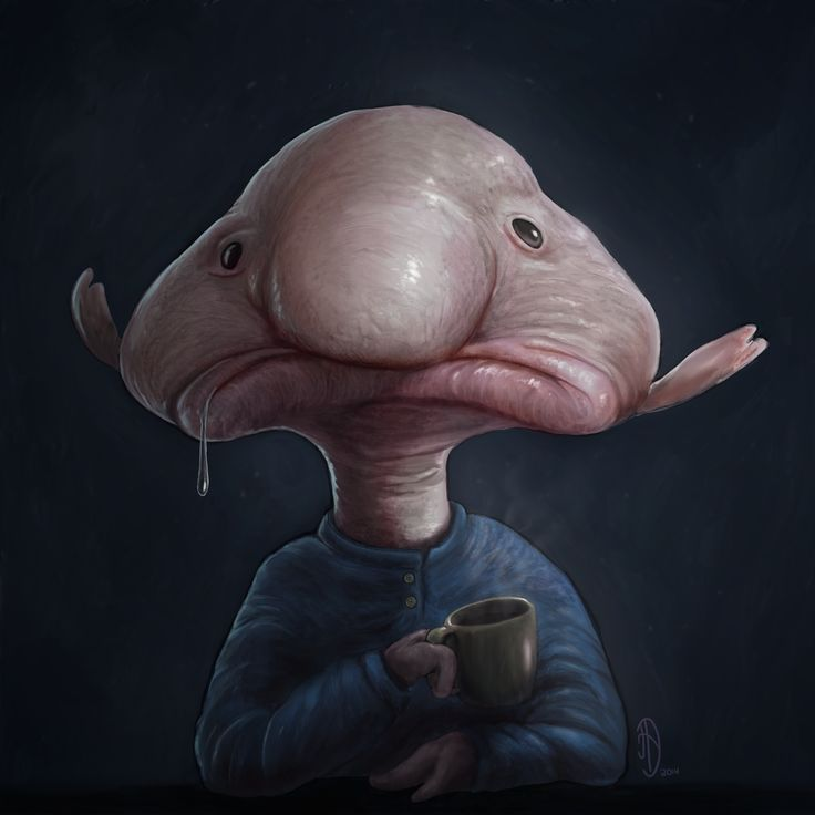 61 best bae images on pinterest strange animals ugly for Ugly fish blob