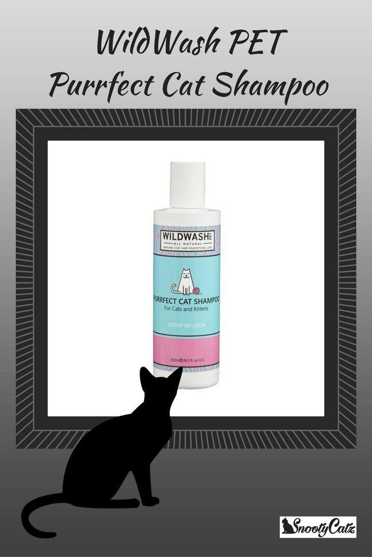 With a Catnip Infusion, It is really important to use a natural grooming shampoo on a cat as they also wash themselves.This shampoo is gentle and kind and scentless, perfect for grooming our feline friends.Purrfect Cat Shampoo uses a Catnip Infusion to help make bath time a pleasurable experience for your feline friend.Bath time could now be their favourite time!Click to buy
