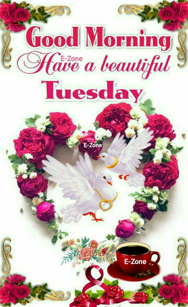 Good Morning Tuesday Greetings Good Morning Tuesday Good Morning Images Good Morning Wishes
