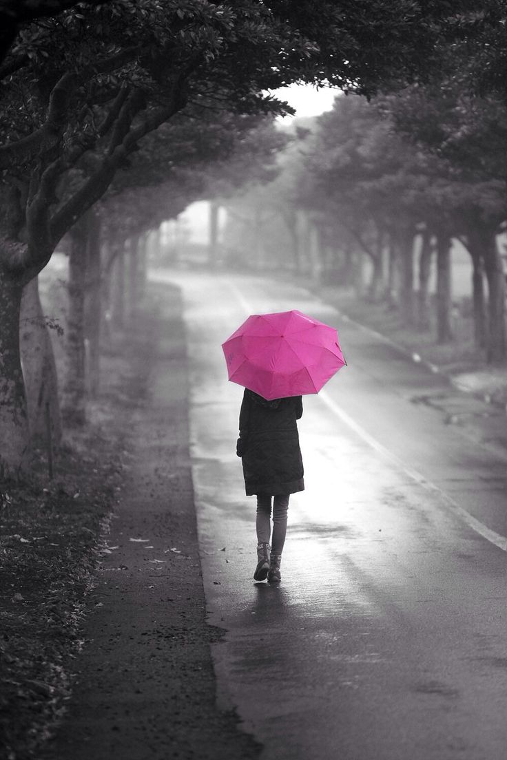 25 best ideas about pink umbrella on pinterest pink
