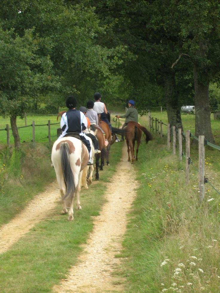 Les chemins de randonnée sont ouverts aux chevaux