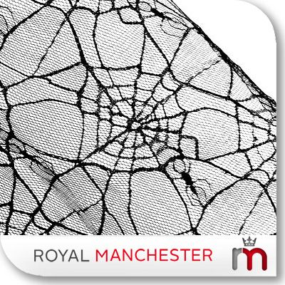 SPIDER WEB GOTH MOSQUITO BED NET CANOPY QUEEN KING, rn