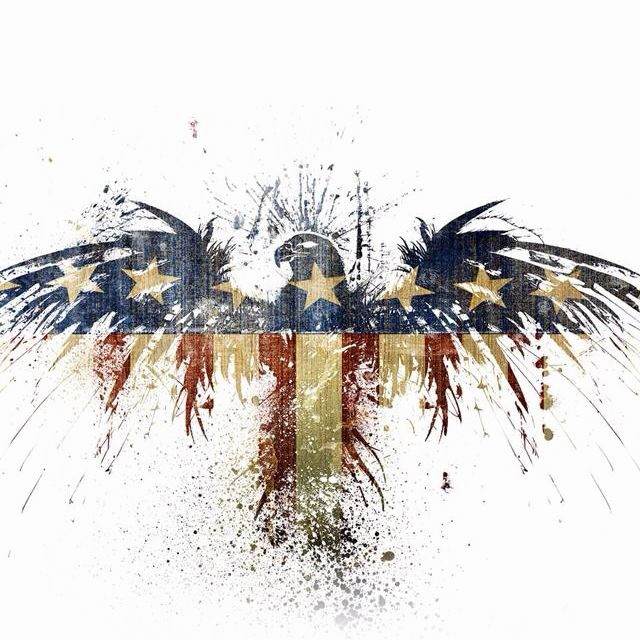 I like the way the Bald EAGLE IS splattered with the American flag colors