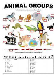 17 best images about 1st grade animal unit on pinterest vocabulary worksheets interactive. Black Bedroom Furniture Sets. Home Design Ideas