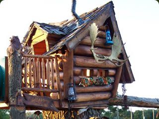 SOOOO wish the one Ryan and I made had been this cool!  Love these tree houses! I want them all! LOL