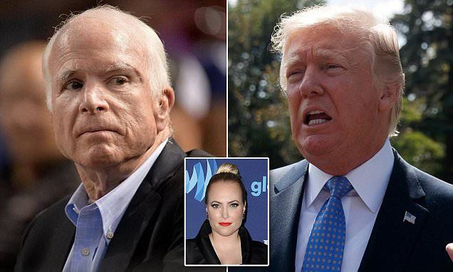 Trump mocks cancer-stricken John McCain's disability | Daily Mail Online