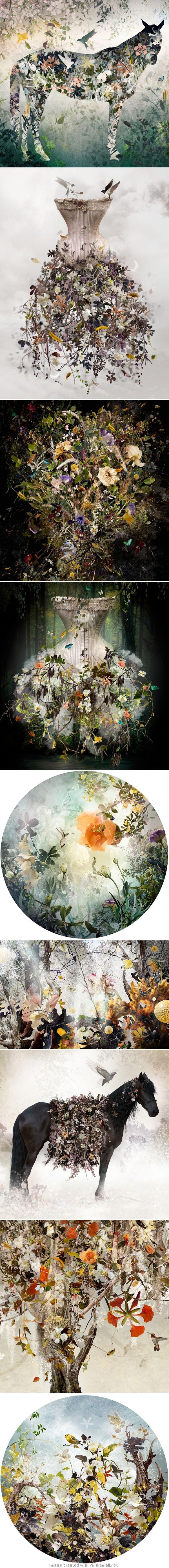 Delicate Digital Fusion – Ysabel LeMay
