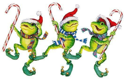 Frogs - Frogs - Animals - Postcards - Christmas Wallpapers, Free ...