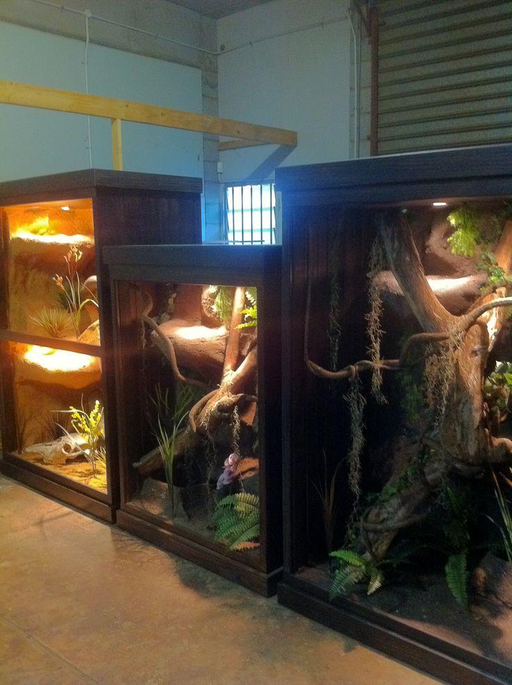 H P Reptiles 37 best Large R...