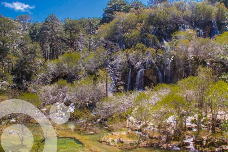 River Cuervo source. Find all the information to plan your trip to #nacimiento-del-rio-cuervo in ww.qnatur.com