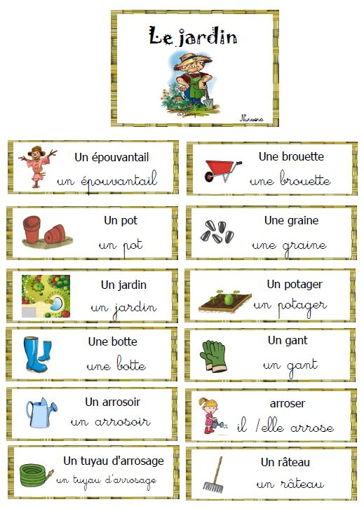 vocabulaire autour du jardin, des plantes