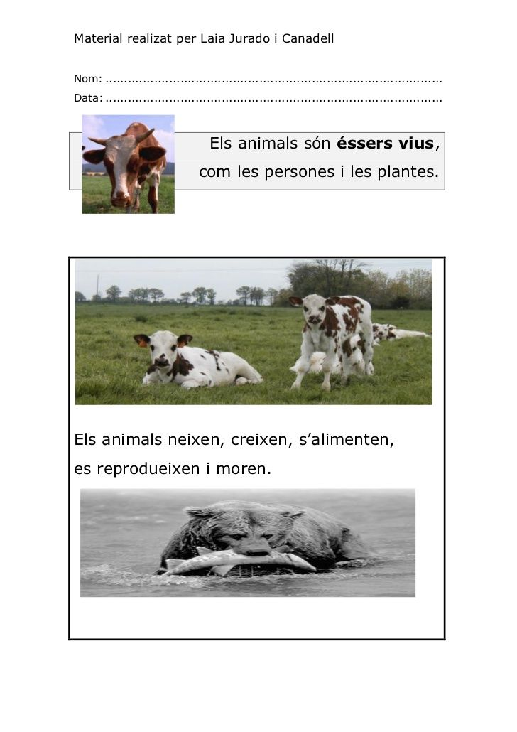 ELS ANIMALS. CICLE INICIAL.