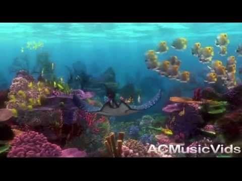 Finding Nemo Under the Sea Ocean Video