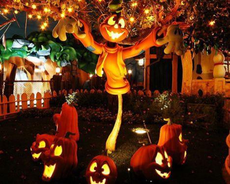 48 best halloween images on pinterest halloween ideas happy halloween and halloween halloween. Black Bedroom Furniture Sets. Home Design Ideas