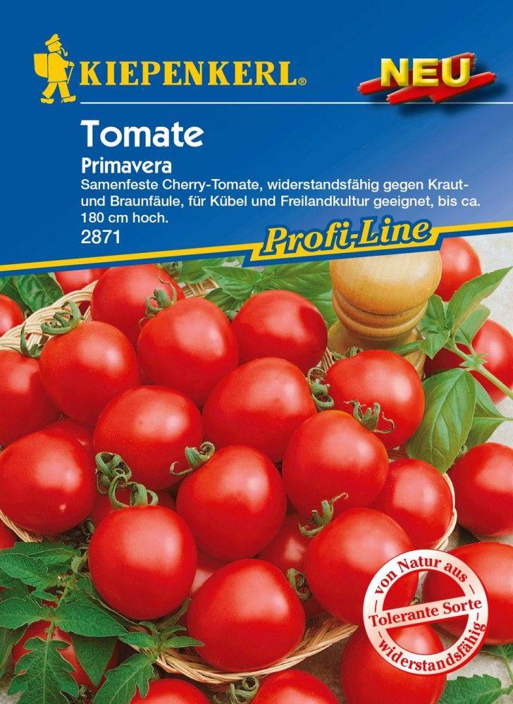 Tomatensamen - Tomate Primavera von Kiepenkerl
