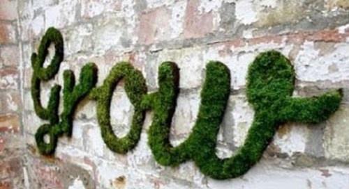 Moss Graffiti!  So cool!Wall Art, Gardens Ideas, Moss Art, Green, One Teaspoon, Moss Graffiti, Street Art, Growing Moss, Streetart