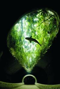 The Dallas World Aquarium, Dallas, Texas ... more than an Aquarium great place to hang out