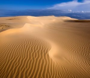 Michelle Clibbon Untouched not a footprint in sight at Anna Bay Sand Dunes by Michelle Clibbon CAT OPEN