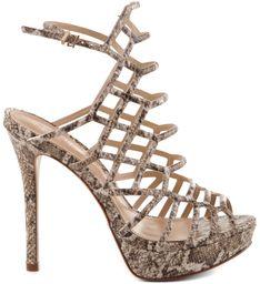Buy Colcci Shoes Online