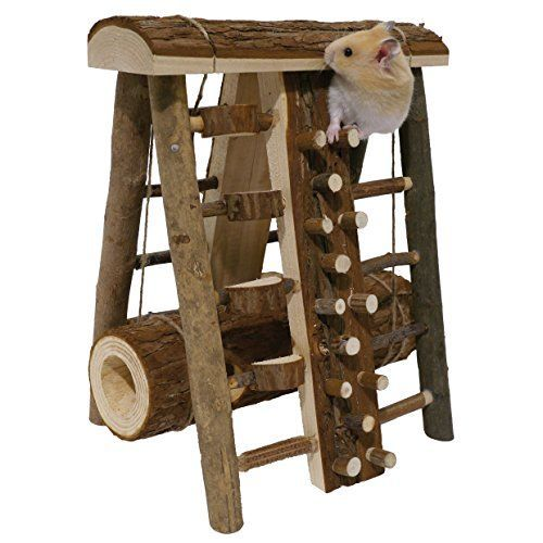 Activity Assault Course - Hamster & Small Animal Toy Rose