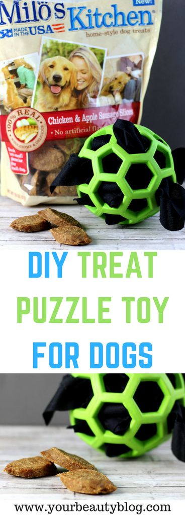 DIY Treat Puzzle Toy For Dogs - Everything Pretty
