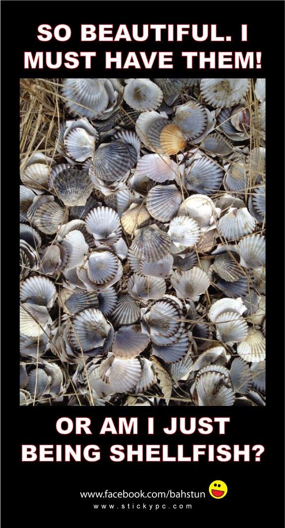 selfish shellfish pun with scallop shell cache