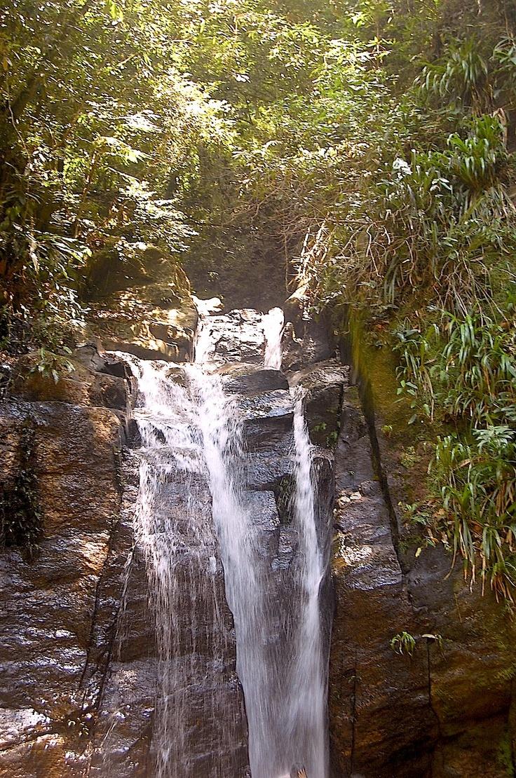 Cachoeira do Horto | Trilhas Cariocas