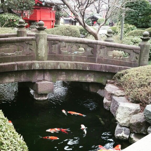 Asakusa Tokyo © copyright Barbara Mazzei