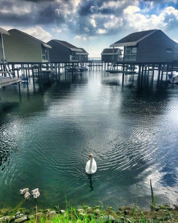 Weil Du Dich in Lauterbach fast wie auf den Malediven fühlst, wenn Du in so einem Pfahlhaus übernachtest.   33 Gründe, warum Du dieses Jahr lieber auf Rügen Urlaub machen solltest