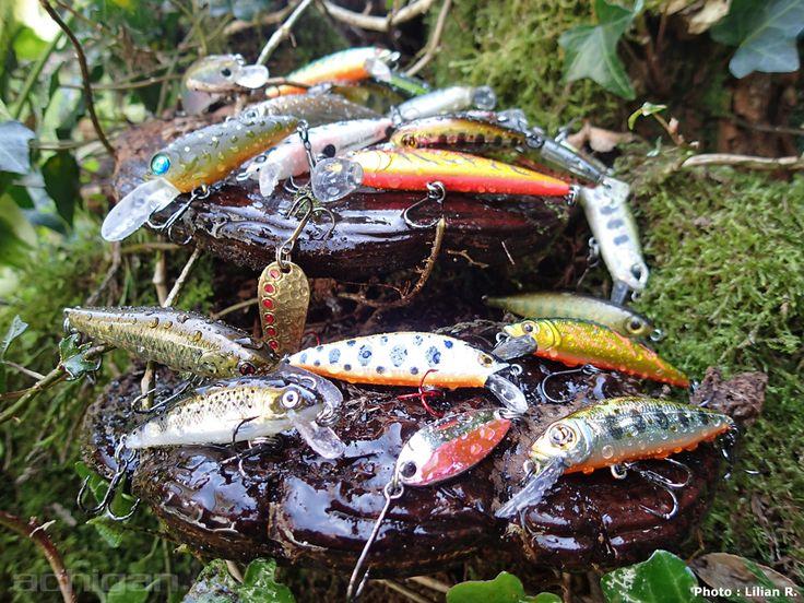 Leurres pour la pêche à la truite - Photo : Lilian R.  Achigan.net