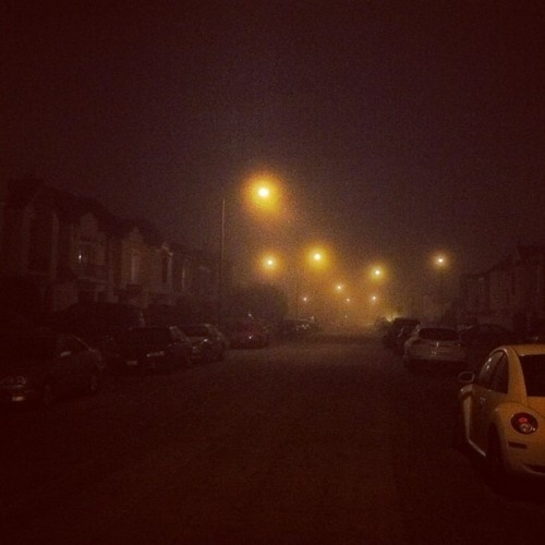 foggy nightFoggy Night, San Francisco, Landscapes Photography