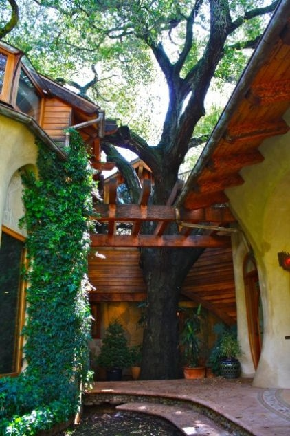 Wow!!: House Design, Shannon Malone, Home Exterior, Cob House, Wooden House, Trees House, Eclectic Exterior, Outdoor Spaces, Dreams Gardens