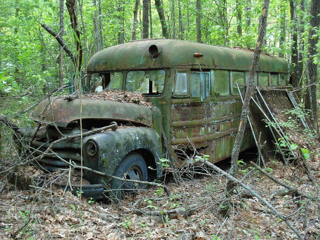 """1948 Chevrolet Superior - Jamesville, Martin County, North Carolina"" -- Green & Rust - Abandoned bus that use to used for storing grain & hay for cattle.]~"