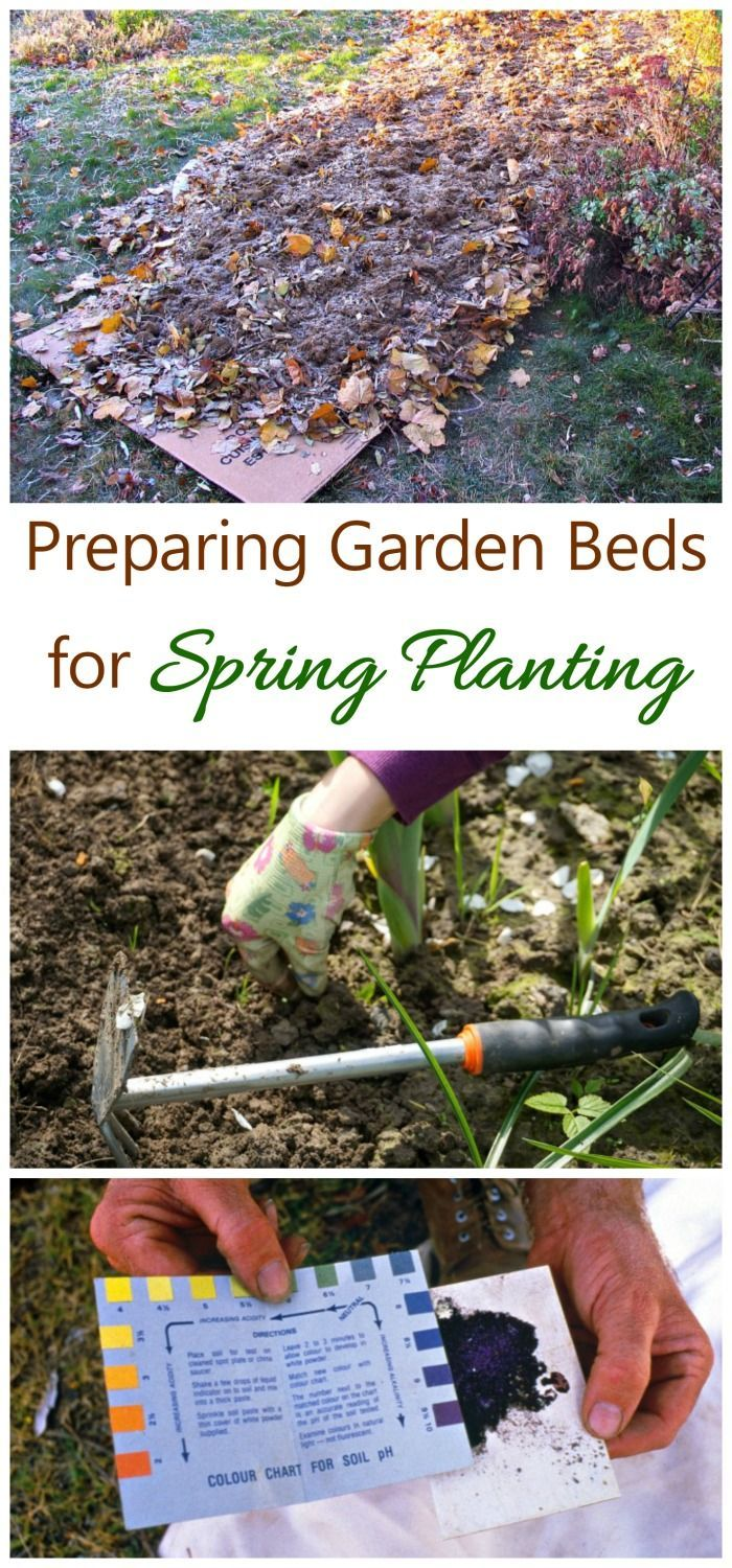 Now is the time to think about preparing spring flower beds for planting. See my tips for making sure your garden beds are ready.