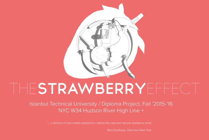 The Strawberry Effect   Conceptual Blog Cover / NYC W34 Hudson River High Line + / ITU Diploma Project by Meric Arslanoglu   2015