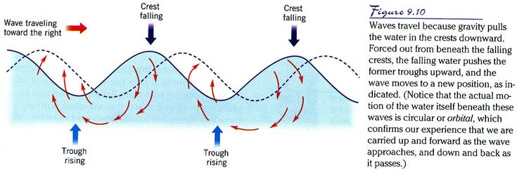 #22 (Optional) -- Learn about the features of waves:  crest, wavelength, trough, and wave height (or amplitude).  What causes waves?  What causes tides?