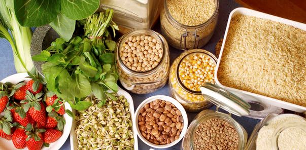 Prevenire il cancro con gli 8 alimenti suggeriti dal professore Franco Berrino   Ultime Notizie Flash