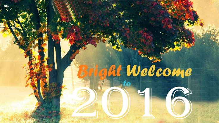 Happy New Year 2016 WhatsApp Images :  http://www.festivalworldz.com/happy-new-year-2016-whatsapp-images/