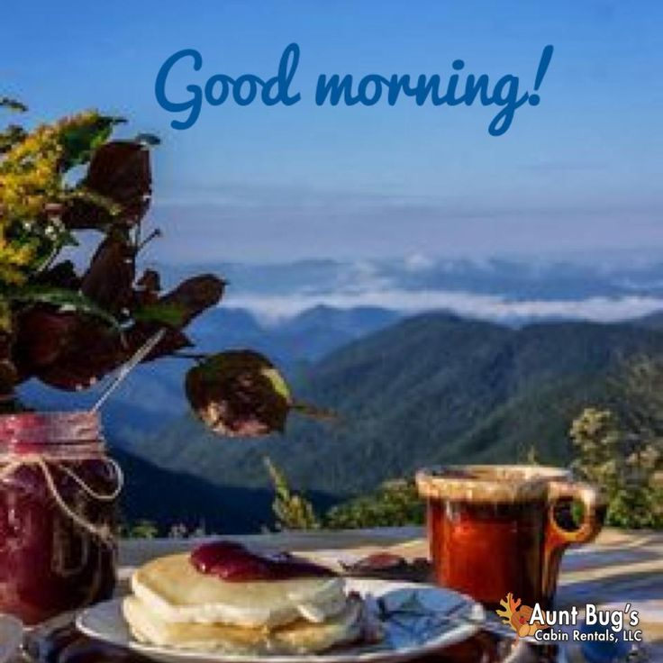 Good Morning Views From Aunt Bug S Cabins Pinterest