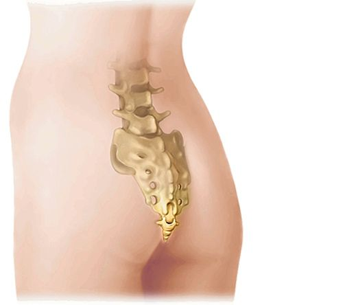 Las hormiguitas por la espalda de la causa y el tratamiento