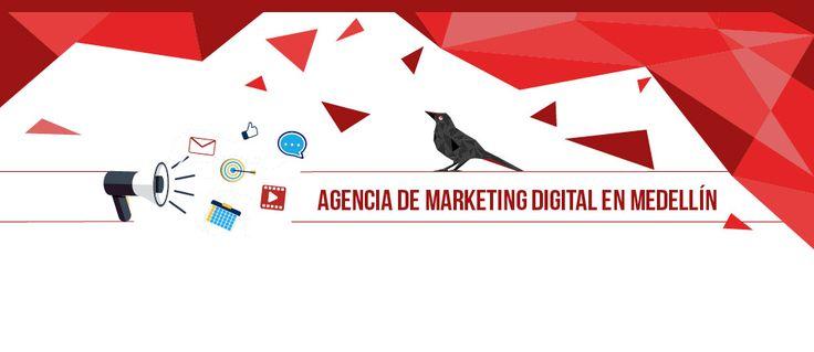 Pixel Crow, una agencia digital en Medellín que hará expandir tu negocio. Ser un buen