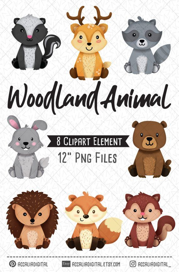 Woodland Animals Clipart Raccoon Forest Friends Sticker Etsy Animal Clipart Woodland Animals Woodland Clipart