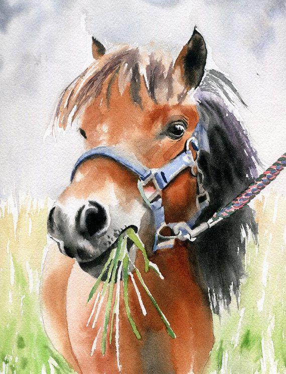 Equestrian Tack Trunk